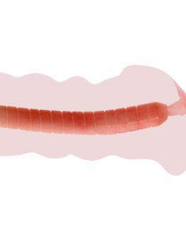 Мастурбатор вагина с вибрацией